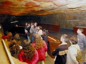 Visitas experimentales a la Cueva de Altamira hasta el mes de febrero.