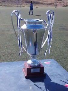 La copa que se llevará el equipo ganador.