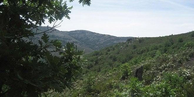 ruta al cerro larda