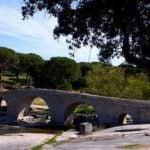 Ruta por Valmaqueda y el río Cofio, en los dominios de la cigüeña negra
