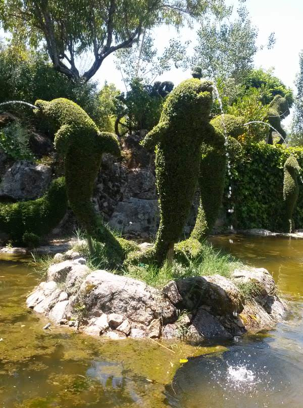 El Bosque Encantado. Delfines
