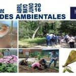 El medio ambiente se acerca a los madrileños con juegos y talleres