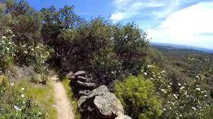 Ruta al Cerro de San Pedro
