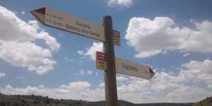 Ruta Palomera
