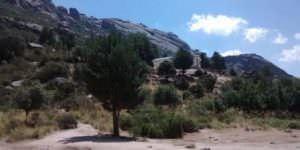 La Pedriza en el Parque Nacional de la Sierra de Guadarrama