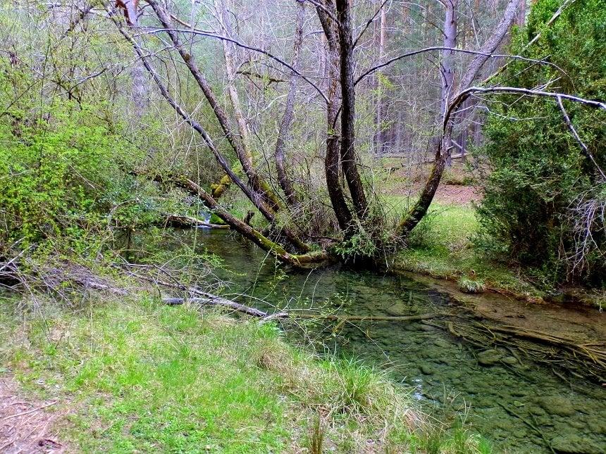 Paisajes en la ruta al nacimiento del río cuervo