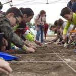 Los niños serán 'arqueólogos por un día' en Alcalá de Henares