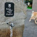 Más fuentes de agua potable para Madrid