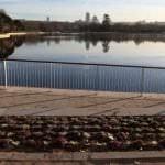 La Casa de Campo presenta su lago y paseos renovados