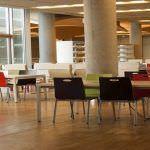 Actividades culturales en las bibliotecas