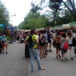 Rumanía, país invitado en la Feria del Libro 2018