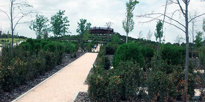 parque forestal valdebebas, antes felipe VI