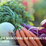 Vuelve el mercado municipal de productores 'Planetario'