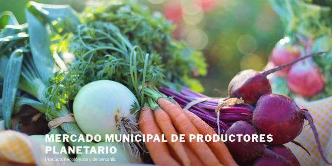 Mercado municipal productores