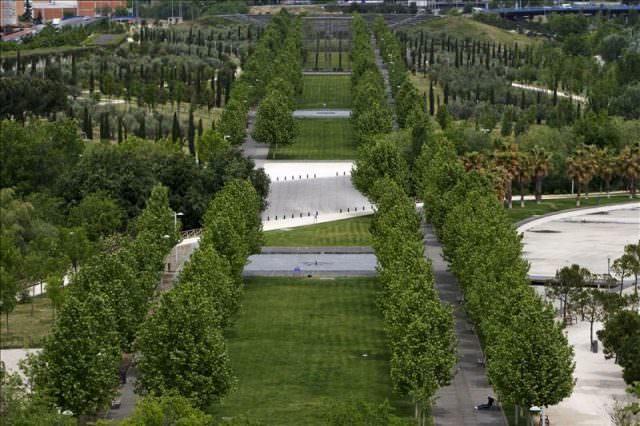 árboles parque lineal del manzanares
