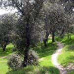 Nueva senda ecológica para el suroeste de la capital