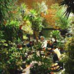 Un jardín efímero colaborativo, en el teatro Conde Duque