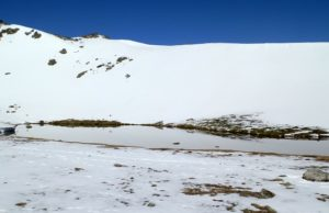 Laguna pájaros con nieve