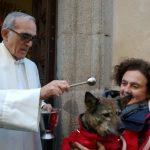 Vuelven las fiestas de San Antón, dedicadas a los animales
