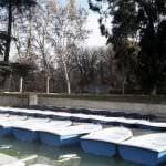 Nuevas barcas a remo en el estanque de El Retiro