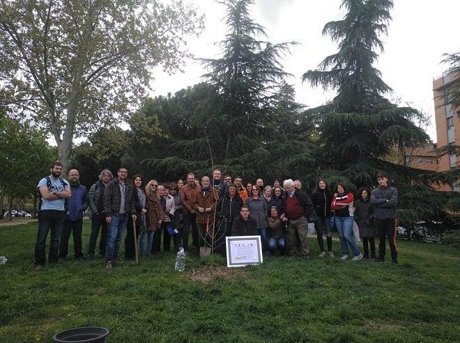asociaciones contra despoblamiento rural plantación árbol avenida guadalajara