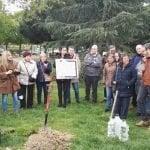 Plantan un árbol para protestar contra el despoblamiento rural