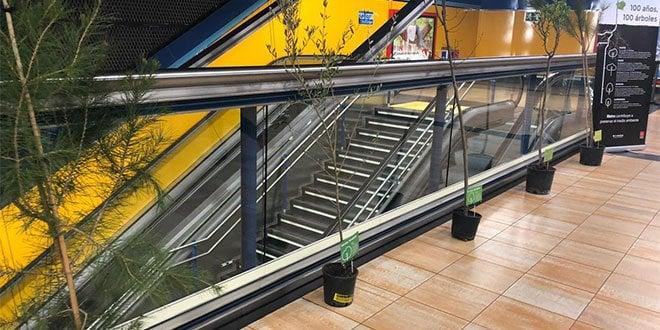 Metro Madrid Centenario Arboles