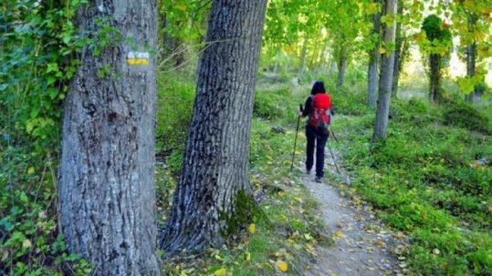 rutas-de-senderismo-madrid