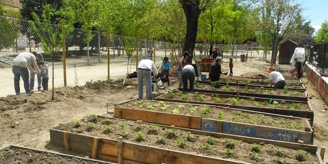 Huerto de la Cornisa, un espacio de gestión vecinal en el Barrio de La Latina