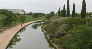 parque Juan Carlos I piragüismo