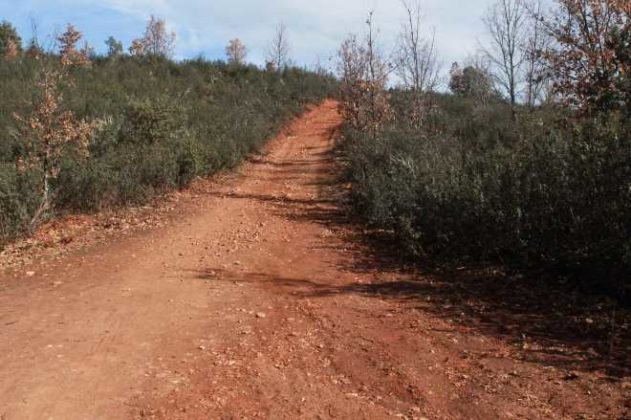 ruta cascada aljibe camino