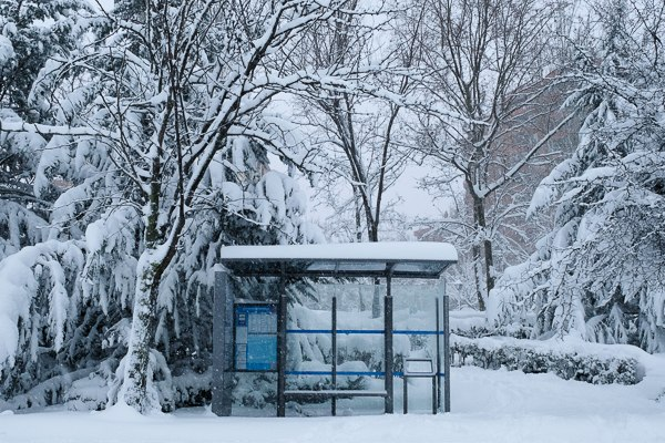 autobuses gratuitos emt temporal Filomena Madrid